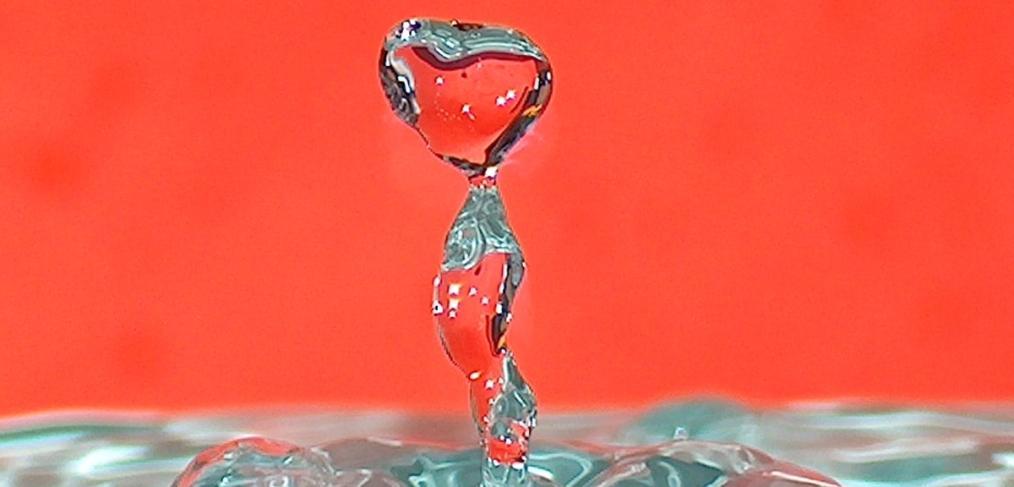 Gatorade Vs Water The Marketing To Washington Two Step Karen E Watson